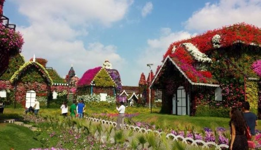 Over-the-top flower attraction